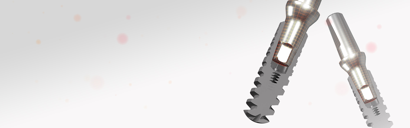 Impianto 3.0_Transfert Protesici