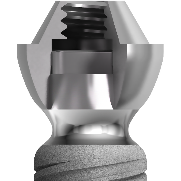 Section of a twinKon®4 conical abutment for dental implant