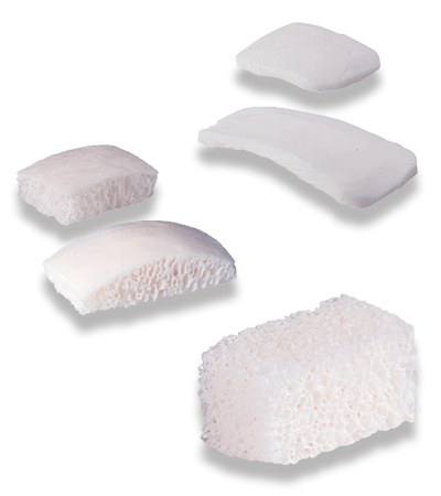 BIOBank plates, blocks and allogenic bone strips