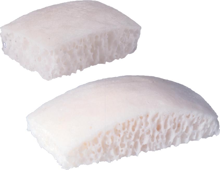 Placche d'osso cortico-spongioso BIOBank